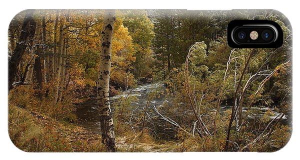 Frosty Fall  Morning IPhone Case