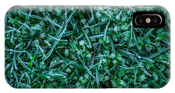 Frost Glass iPhone Case - Frosty Grass by Mr Doomits