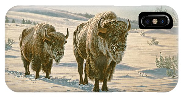 Yellowstone iPhone Case - Frosty Morning - Buffalo by Paul Krapf