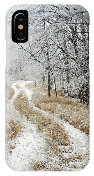 Frosty Trail IPhone Case