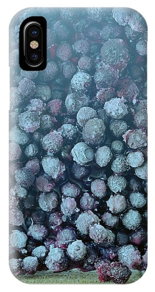 Blue Berry iPhone Case - Frozen Blueberries by Romulo Yanes