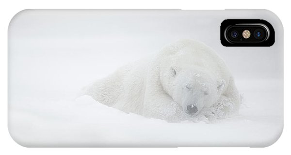 Frozen Dreams IPhone Case