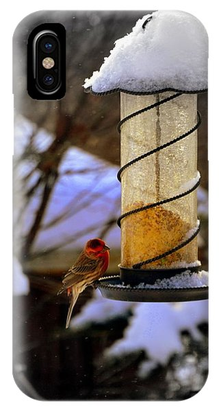Frozen Feeder And Disappointment IPhone Case