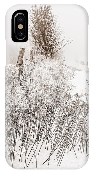 Frozen Fog On A Hedgerow - Bw IPhone Case
