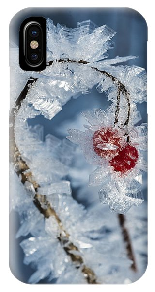Frozen Food IPhone Case