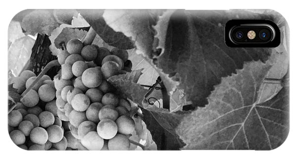 Fruit -grapes In Black And White - Luther Fine Art IPhone Case