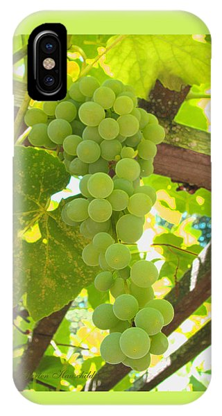 Fruit Of The Vine - Garden Art For The Kitchen IPhone Case