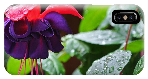 Fuchsia After Rain IPhone Case