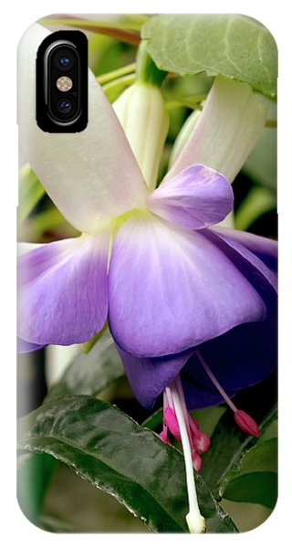 Delta iPhone Case - Fuchsia 'delta's Sarah' by Ian Gowland