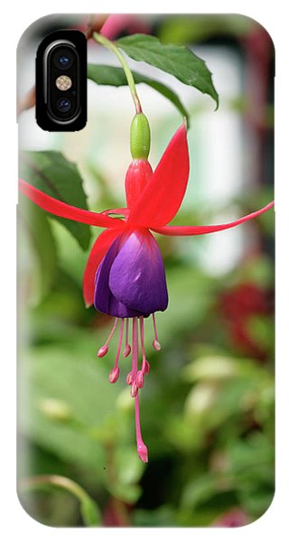 Fuchsia (fuchsia 'merlin') Phone Case by Chris B Stock/science Photo Library