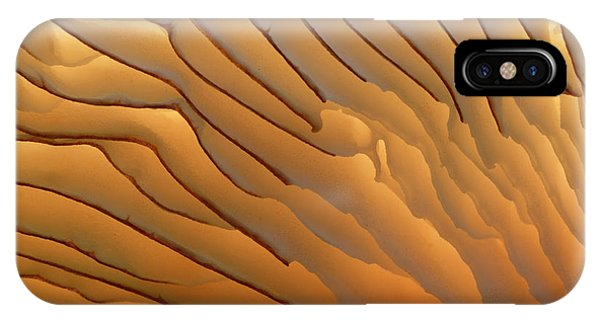 Fungus Gills Abstract Phone Case by Nigel Downer/science Photo Library