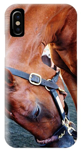 Funny Cide A Champion IPhone Case