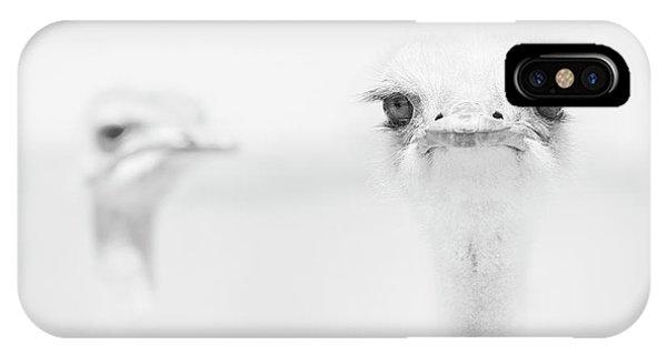 Ostrich iPhone Case - Funny Ostrich by Carlo Tonti