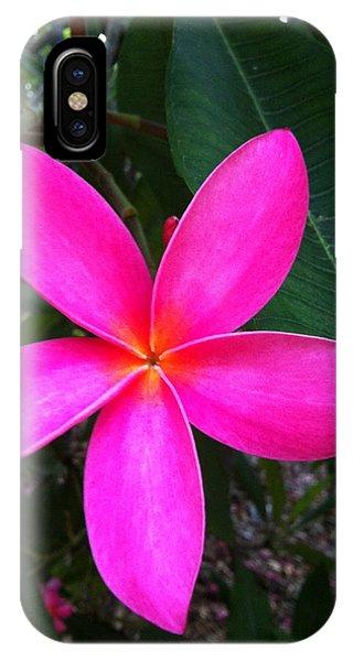 Fuschia Plumeria Bloom IPhone Case