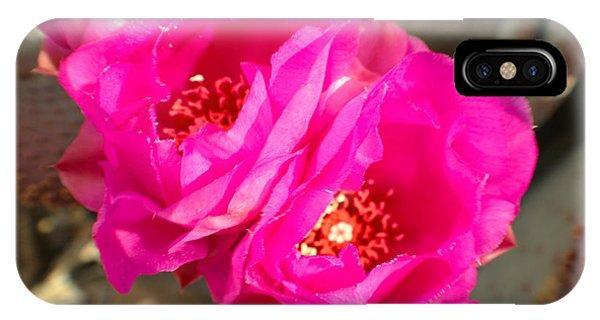 Fuscia Desert Rose Phone Case by Rebecca Christine Cardenas