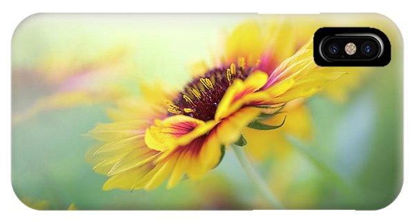 Flower Gardens iPhone Case - Gaillardia by Jacky Parker