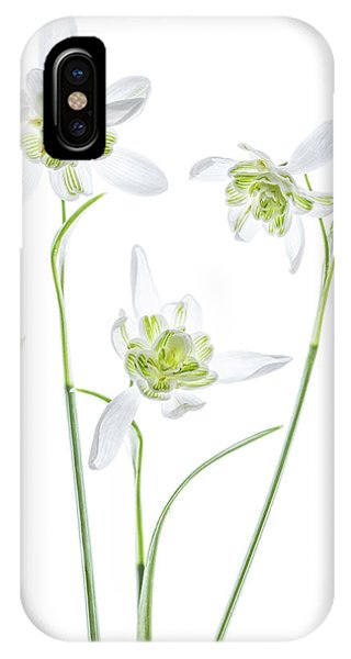 Galanthus Flore Pleno Phone Case by Mandy Disher