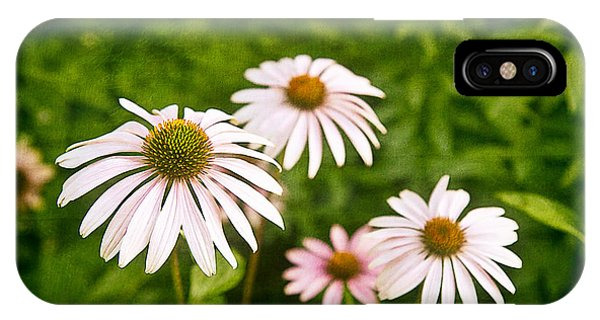 Greenery iPhone Case - Garden Dasies by Tom Mc Nemar