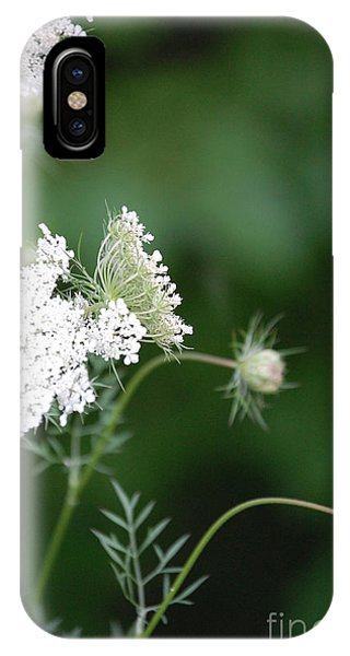 Garden Lace Group By Jammer IPhone Case