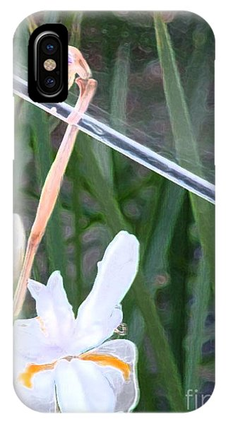 Garden Under Glass IPhone Case
