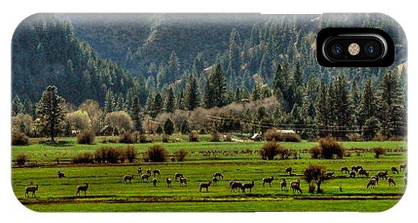 Garden Valley Elk Herd IPhone Case