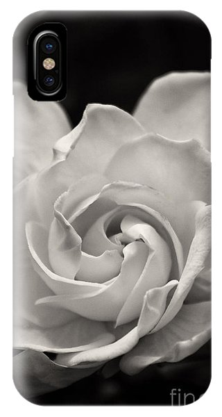 Gardenia Bloom In Sepia IPhone Case
