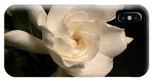 Gardenia Blossom IPhone Case