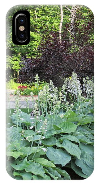 Gardens 111 Phone Case by Patsy Pratt