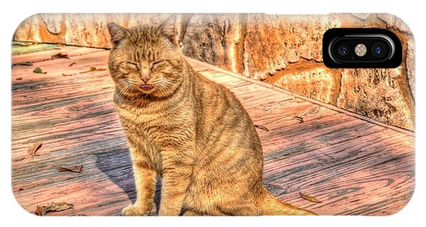 Garfield 02 IPhone Case