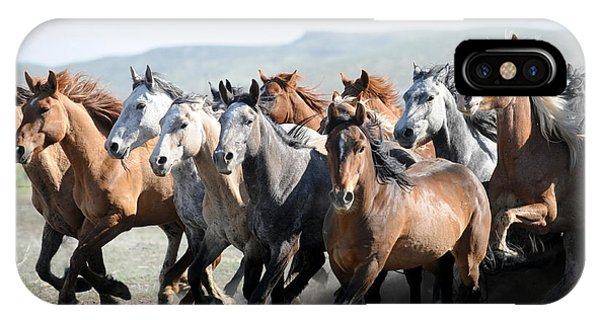 Gathering Horses Phone Case by Lee Raine