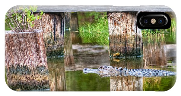 Gator At The Old Trestle IPhone Case