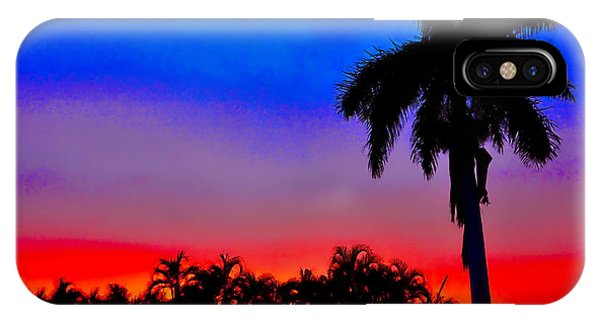 Gator Nation Sunset IPhone Case