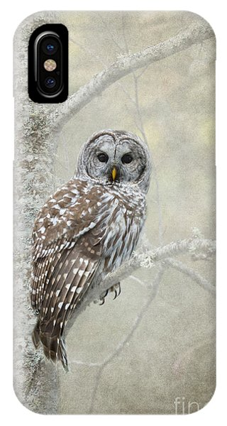 Bar iPhone Case - Guardian Of The Woods by Beve Brown-Clark Photography