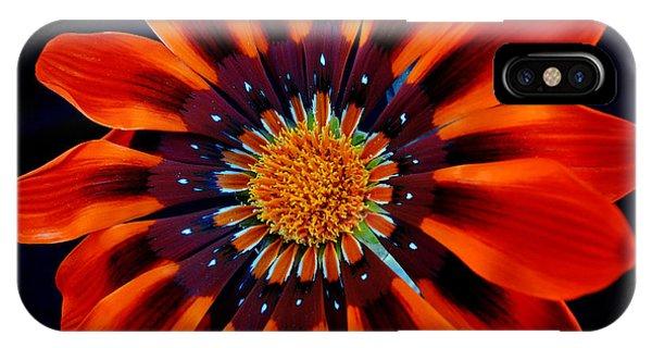 Gazania Flower Phone Case by Larry Harper