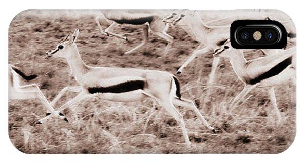 Gazelles Running IPhone Case