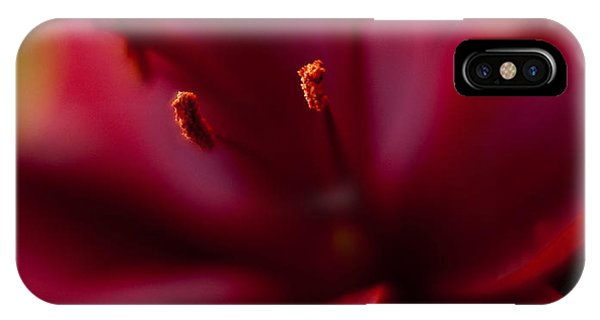 Lilly iPhone Case - Gazer Red Angles by Mike Reid