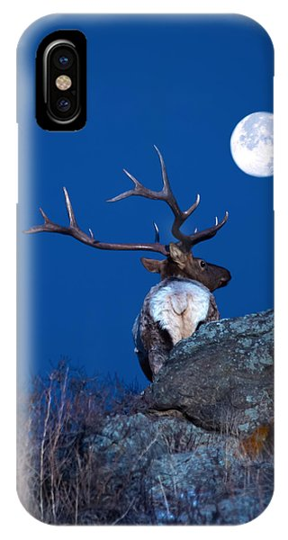 Gazing At The Moon IPhone Case