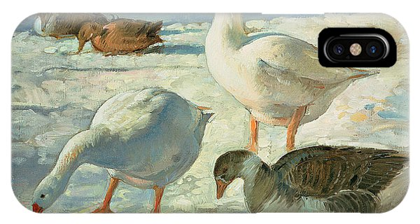 Mallard iPhone Case - Geese And Mallards, 2000 Oil On Canvas by Timothy Easton