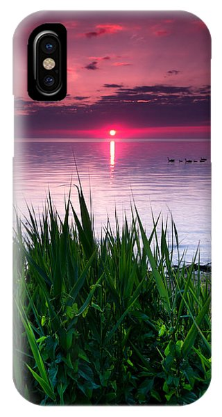 Geese At Sunrise IPhone Case
