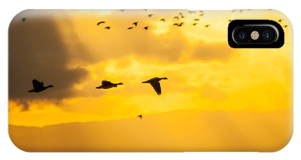Geese At Sunset-2 IPhone Case