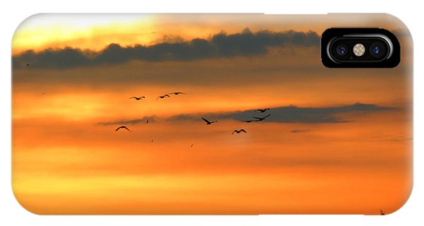Geese Into The Sunset IPhone Case