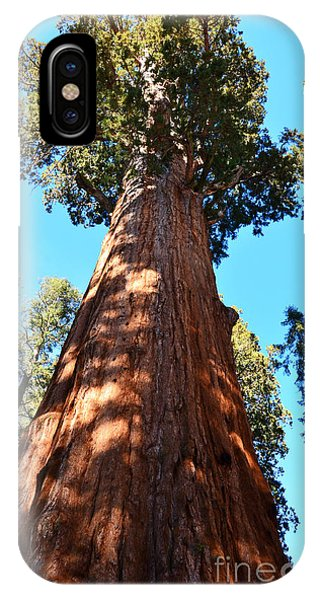 General Sherman Tree, Sequoia National Park, California IPhone Case