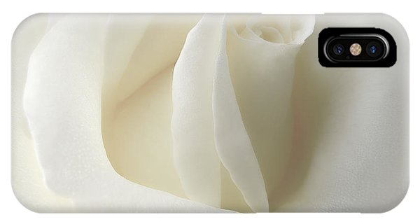 Gentle White Rose Flower IPhone Case