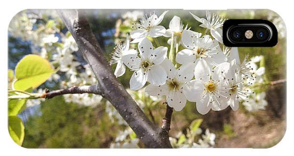 Georgia Blossoms IPhone Case