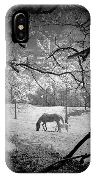 Georgia Horses IPhone Case