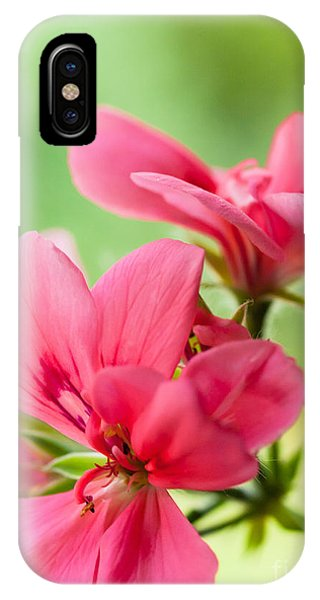 Geranium Gift IPhone Case