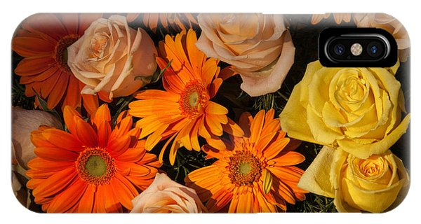Gerber Daisy And Rose Background IPhone Case