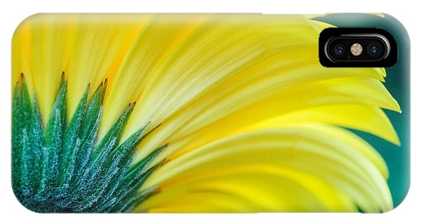IPhone Case featuring the photograph Gerber Daisy by Garvin Hunter
