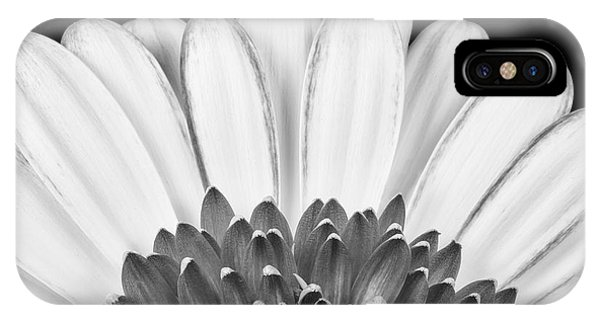 Gerbera Rising IPhone Case