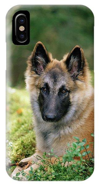 German Shepherd Dog Phone Case by Bjorn Svensson/science Photo Library